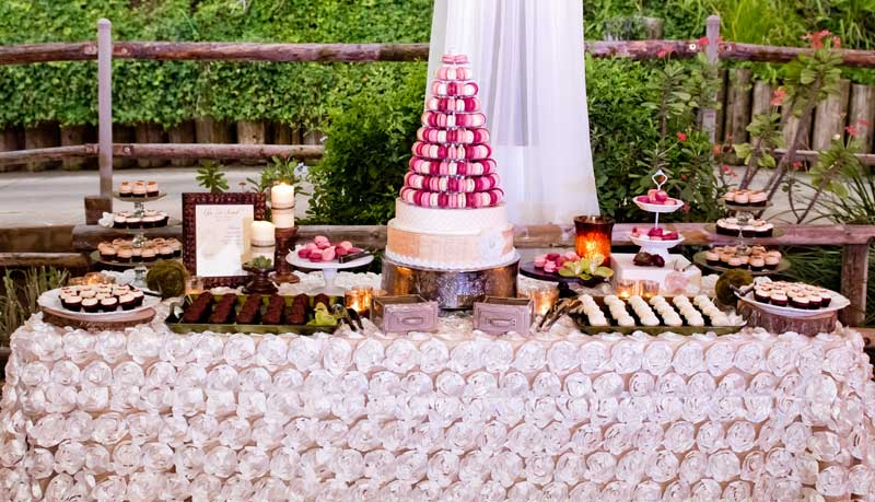 ladolceidea-san-diego-safari-wedding-dessert-table_1