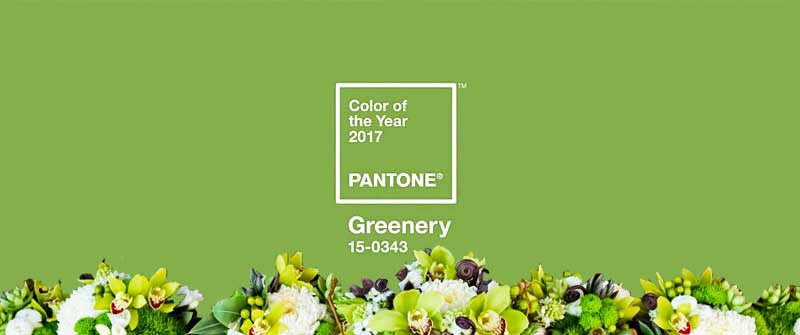 greenery is pantone s color of the year for 2017. Black Bedroom Furniture Sets. Home Design Ideas
